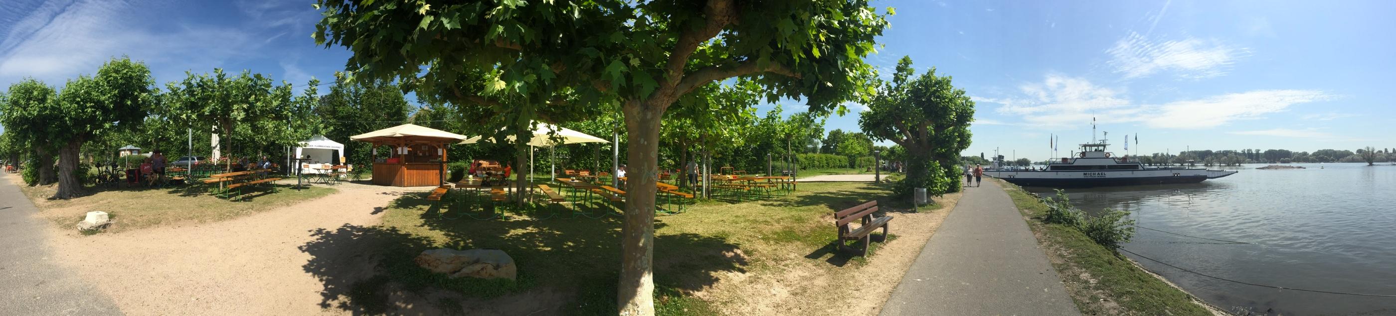 Das VDP Weingut Schönleber betreibt den Weinstand an der Rheinfähre zweimal im Jahr.